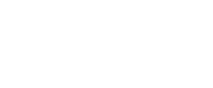ValView MIPS Estimator